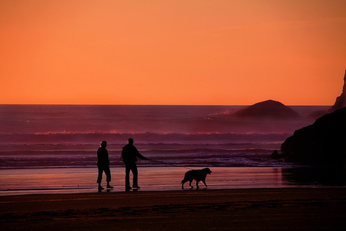 2 people walking a dog on the beach