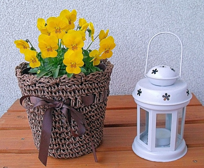 flowers and a lantern