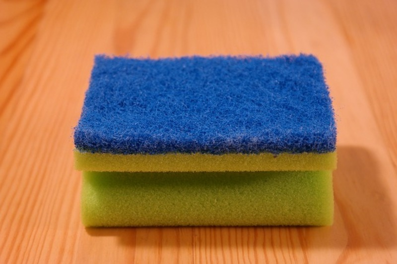 sponge